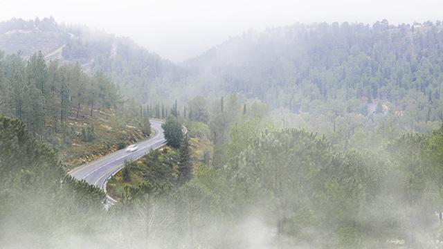 ערפל צילום תמונה אמיתי קרני רות